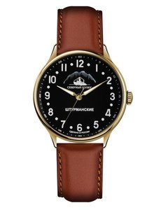 Watch Sturmanskie Arctic 2409/2266294